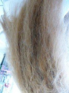 steampod-chevelure-avant-224x300 lisseur vapeur cheveux dans coiffure la caleche