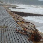 blonville-tempete-planches-souillees-150x150