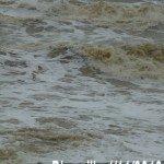 blonville-tempete-vagues-150x150